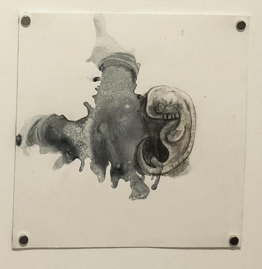 embryo6..jpg