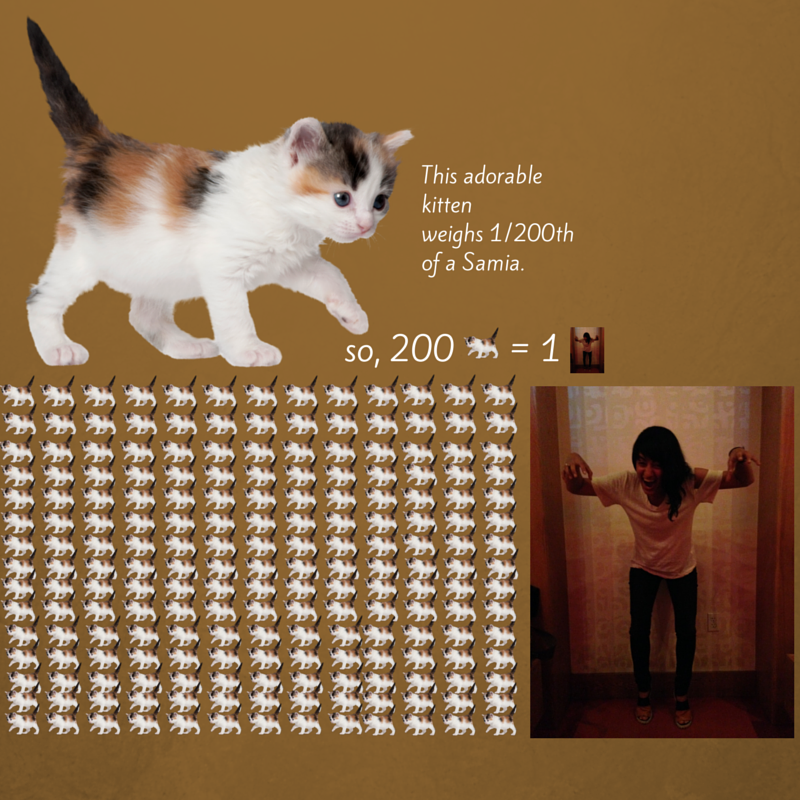 Kitten to Samia.png