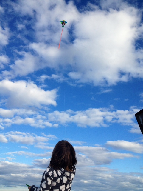 Kite flying on Duxbury Beach, Duxbury, MA