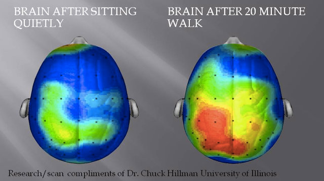 3025957-inline-i-1-what-happens-to-our-brains-when-we-exercise-and-how-it-makes-us-happier.jpg