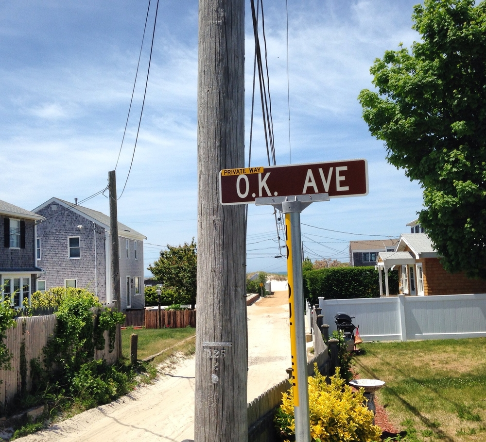 The little path that led to the beach from our Cape house. O.K. Ave was the next street over - what a perfect name! Everything's ok on O.K. ave.