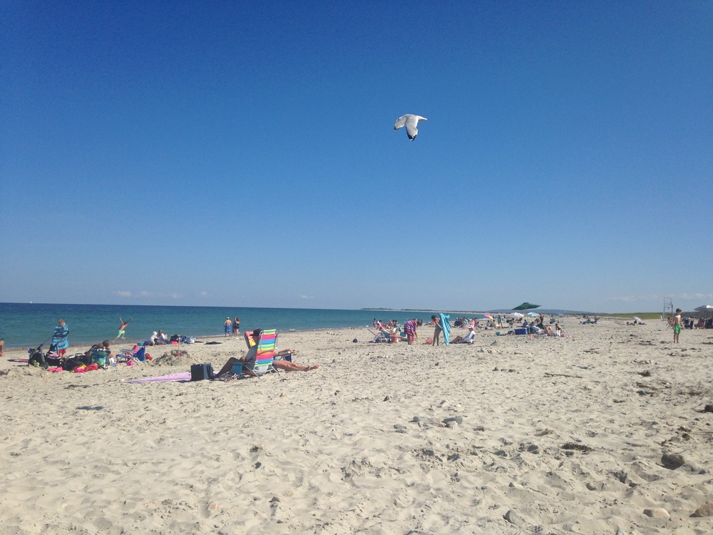Duxbury beach.