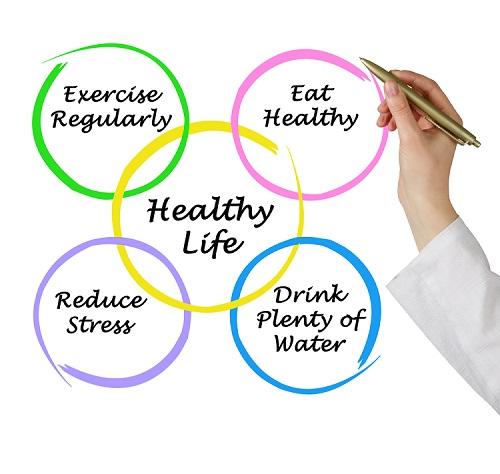 Healthy Lifestyle Diagram 2.jpg