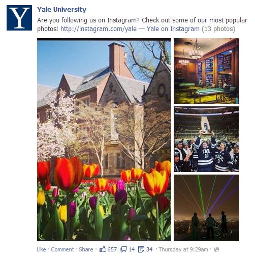 Yales.jpg