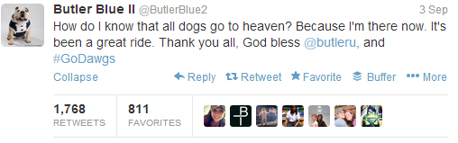 So sad, but so sweet. RIP Blue II!