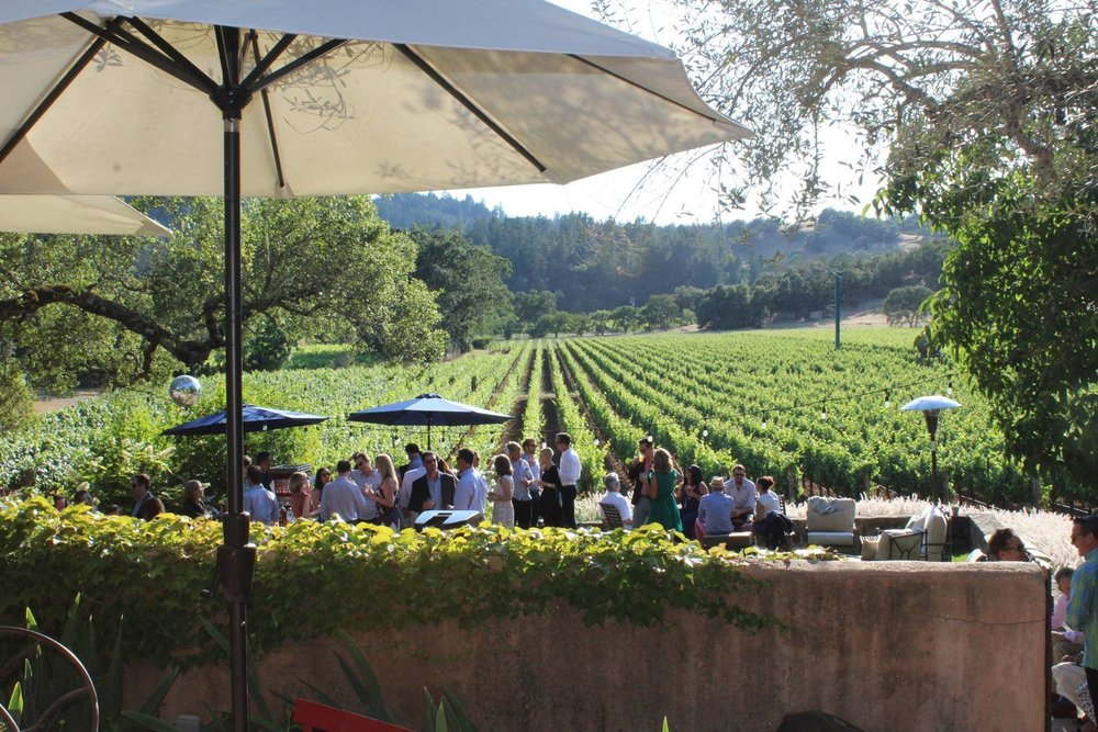 JAX Vineyards