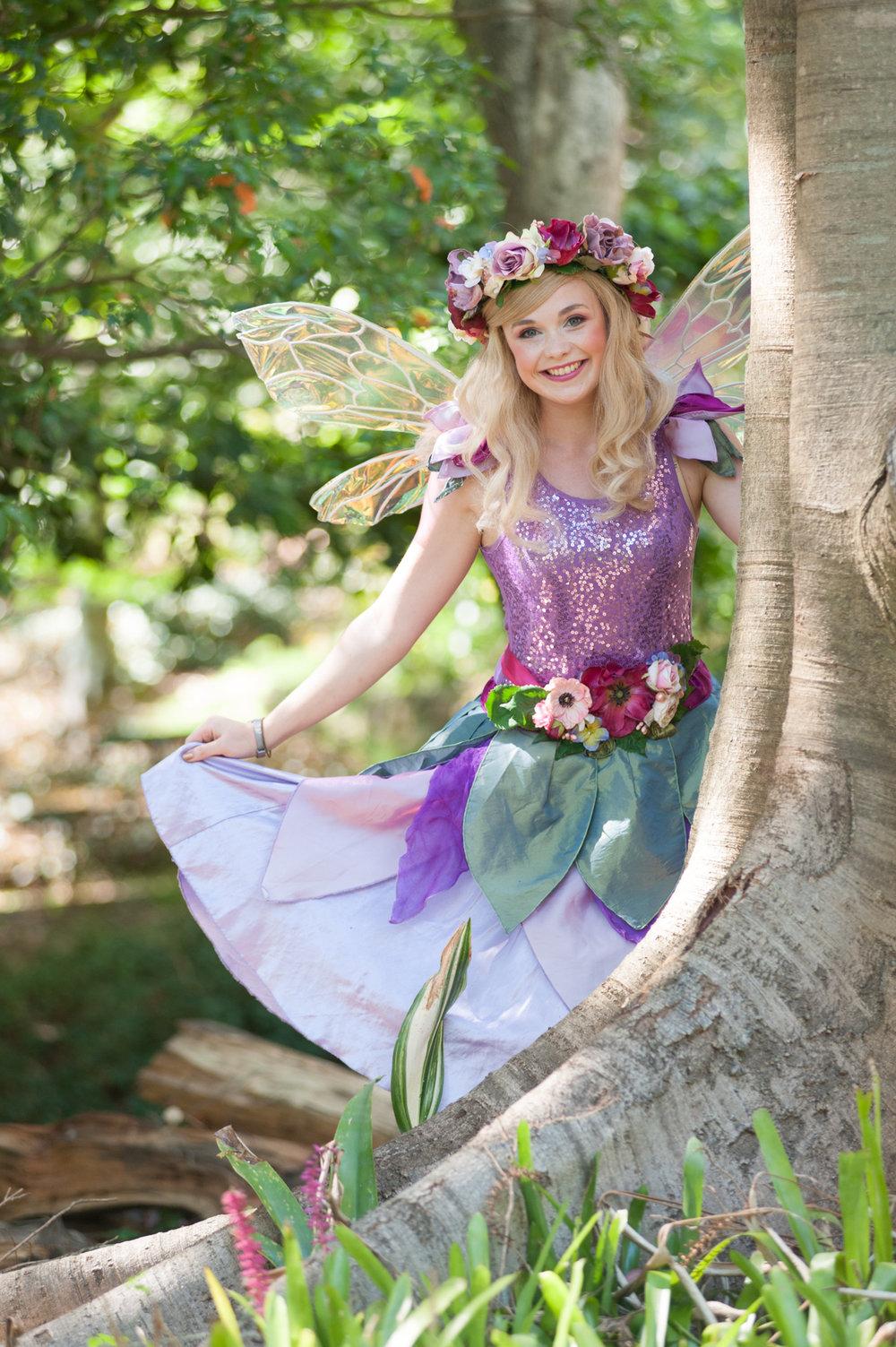 Fairy Violet