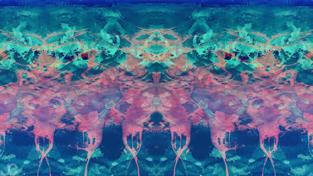 Orchid14K8BWM.jpg