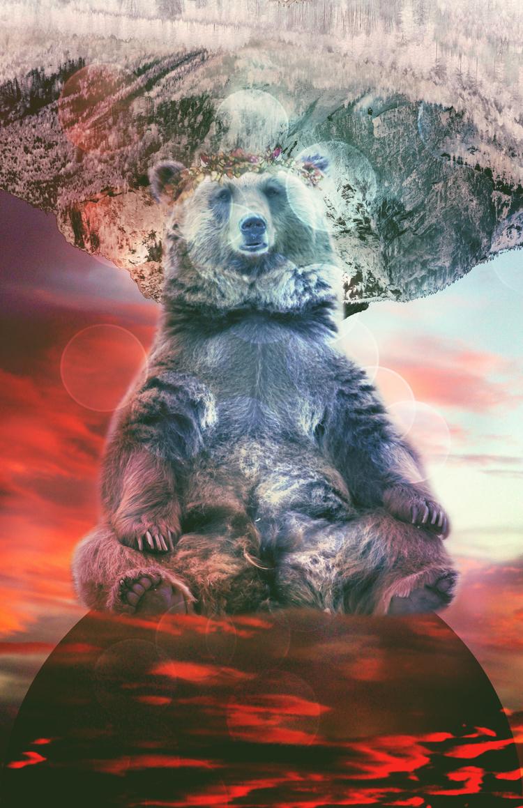 king-bear.jpg