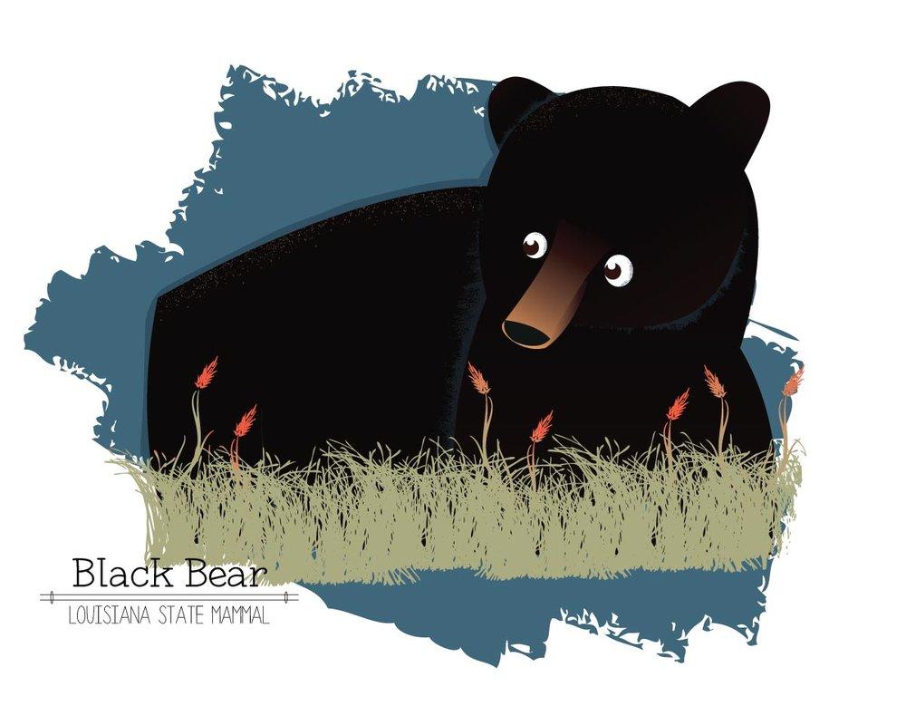 Bear_test.jpg