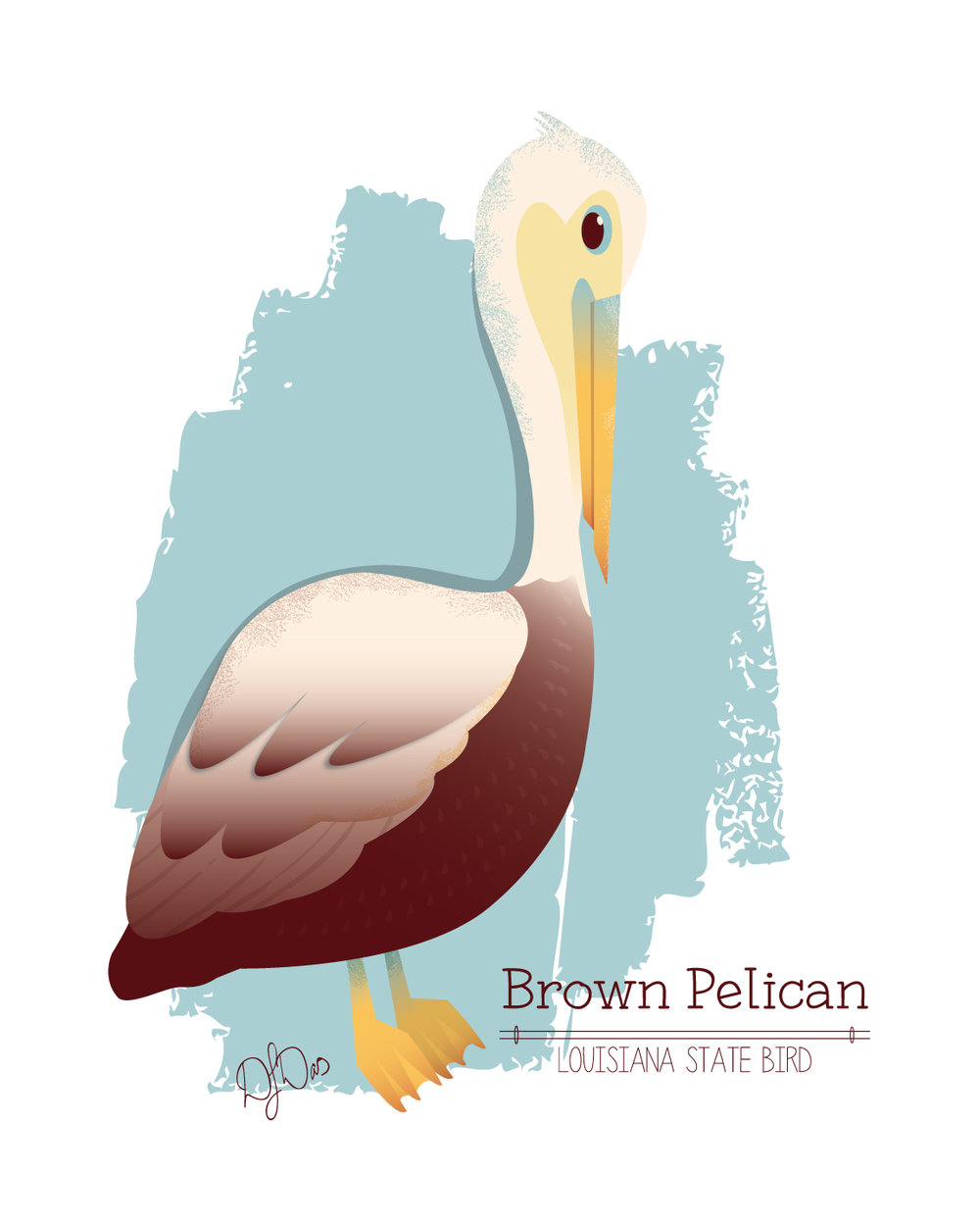 Brown_Pelican.jpg