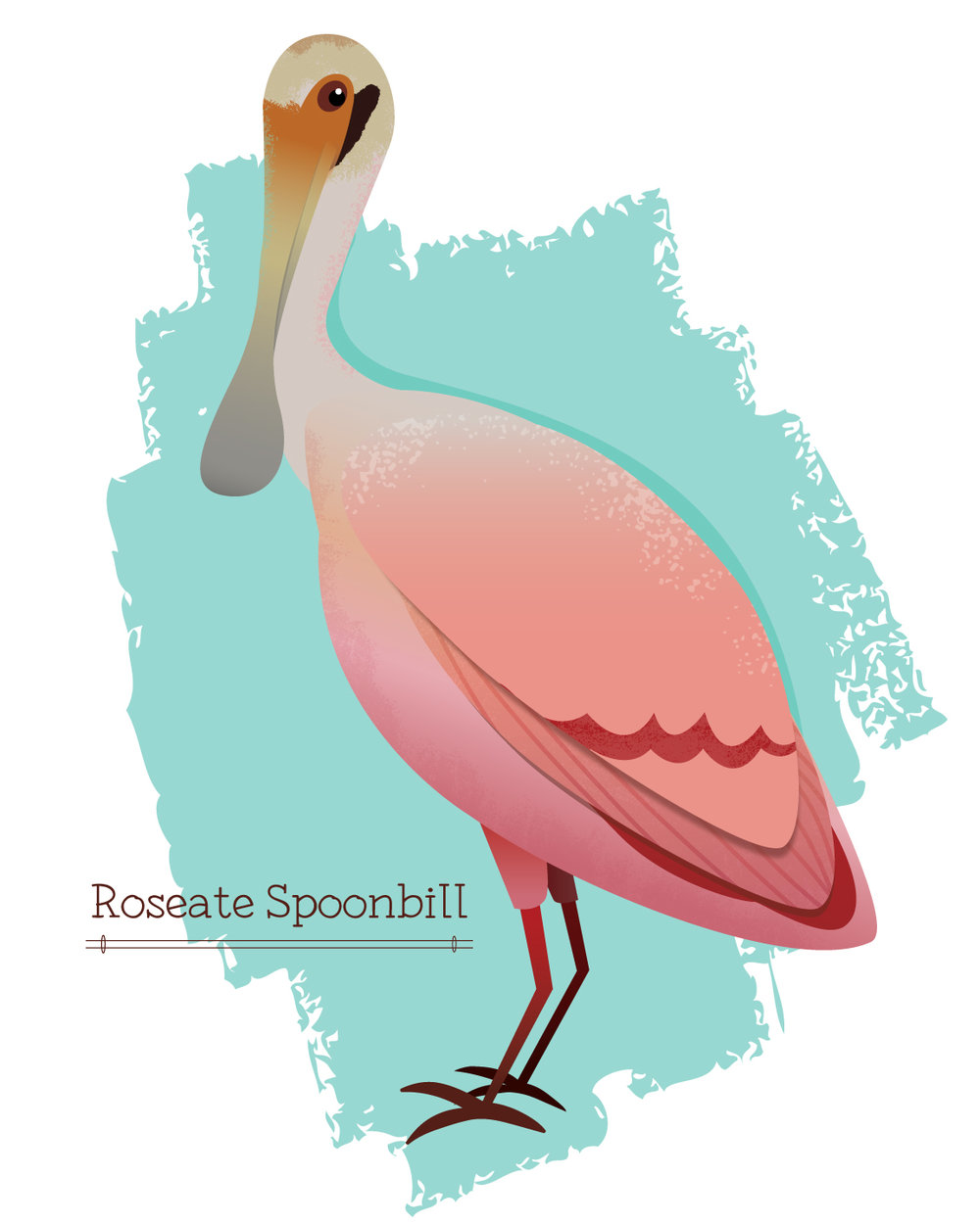 Roseate_Spoonbill.jpg