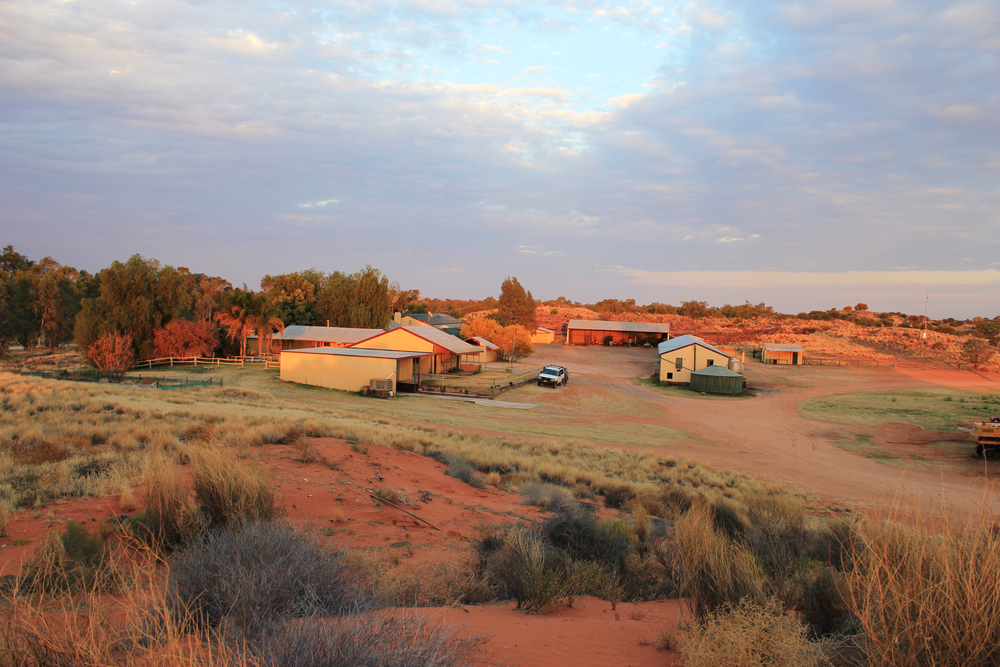 Henbury Station homestead with the Finke River at left. Photo by Rebecca Sullivan.