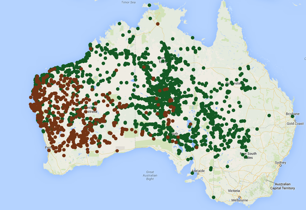 The ranges of the central (in green) and western (in brown) netted dragons, according to the records of the Atlas of Living Australia.