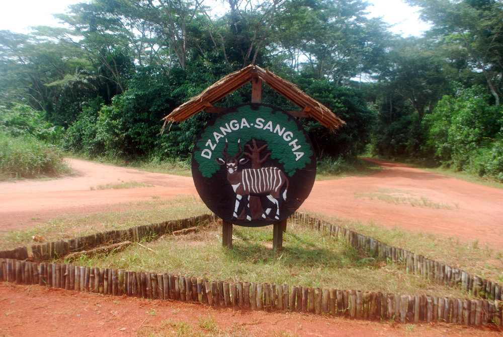 The entrance to Dzanga-Sangha National Park