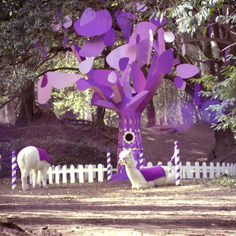 Joyvile tree.jpg