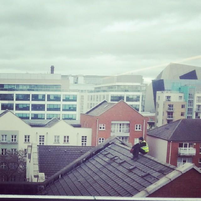 Roofie!