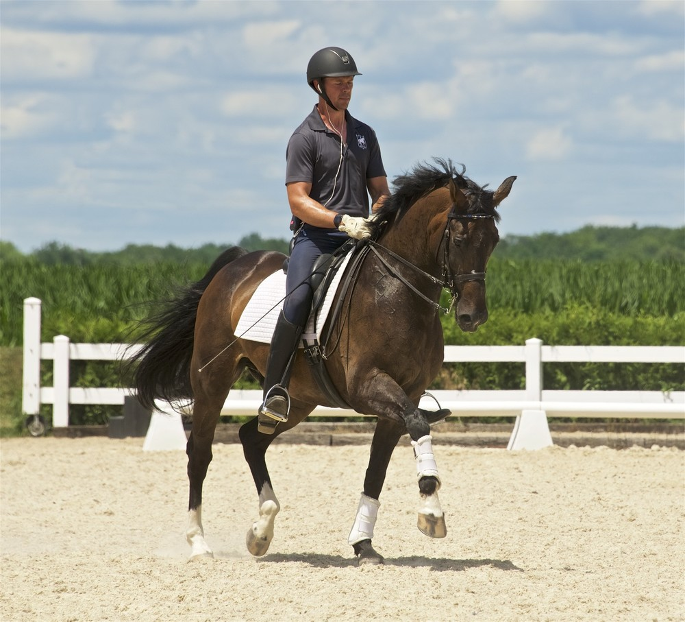 Leslie Burket's Paddington & Martin Kuhn at 2016 CLD Lilo Fore Clinic