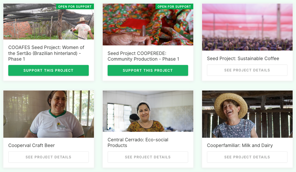 →  View the current collection of Moeda Seed projects
