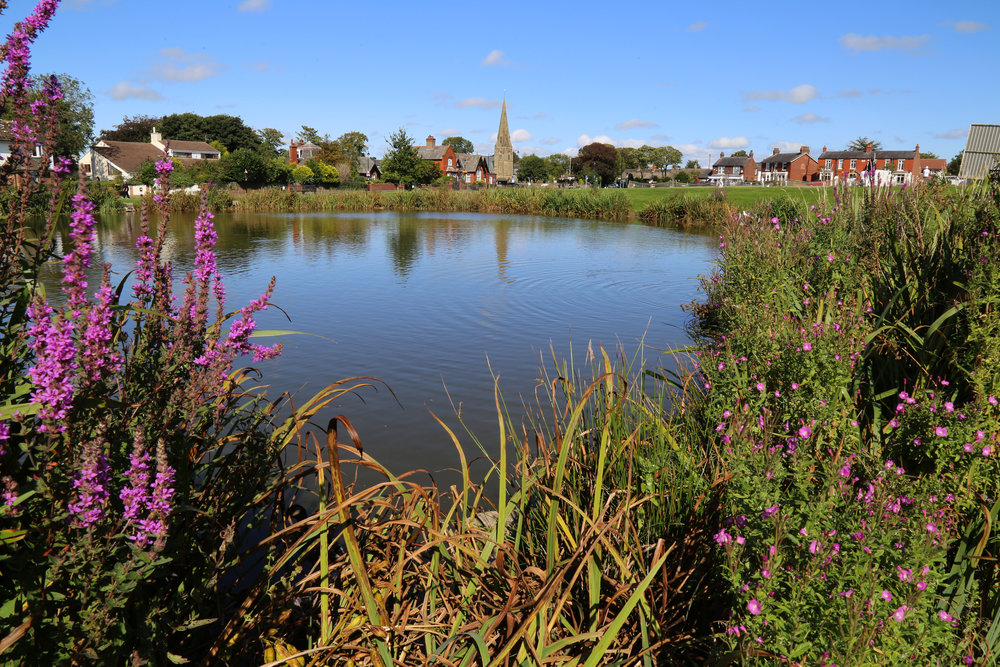 22 - Wrea Green Pond.JPG