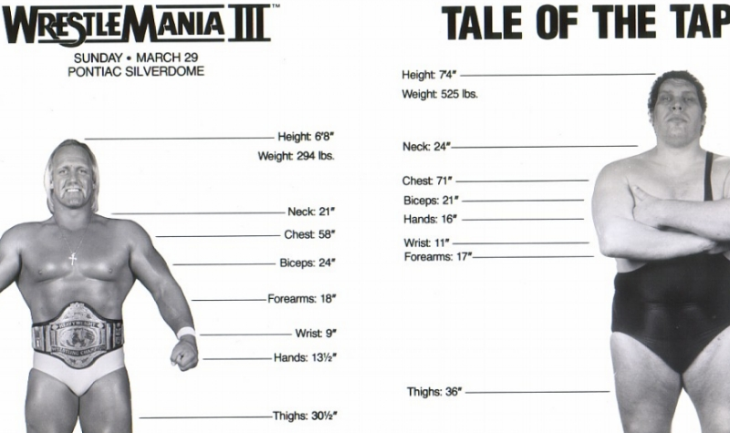 Hulk Hogan vs Andre The Giant Tale Of The Tape.jpg