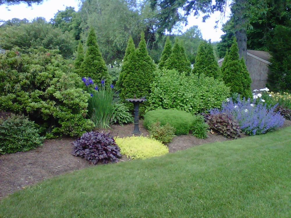 perennial garden.jpg