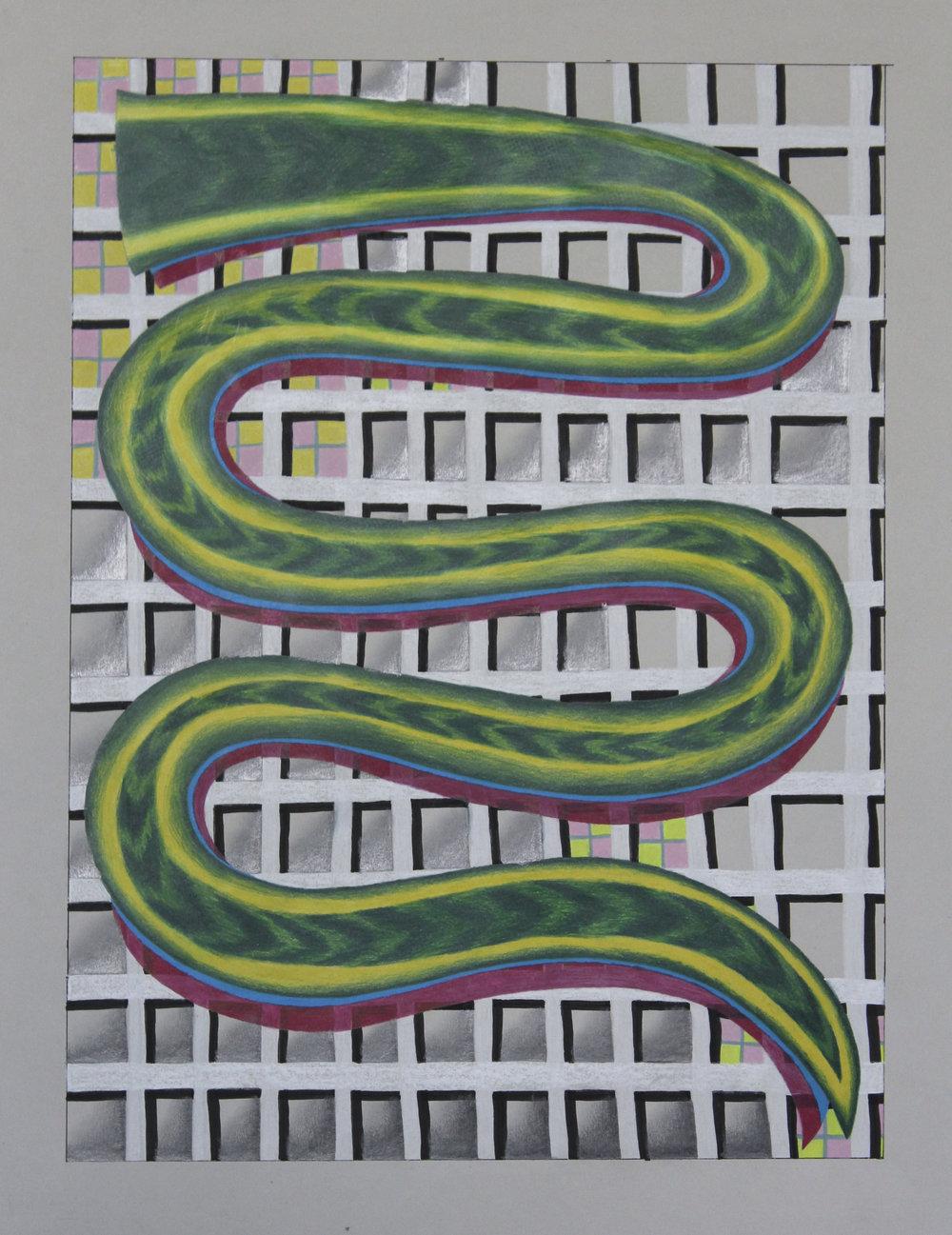 nmn_Snake-Plant_2016.jpg
