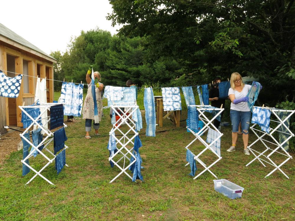 KF, LV Indigo drying (1 of 1).jpg