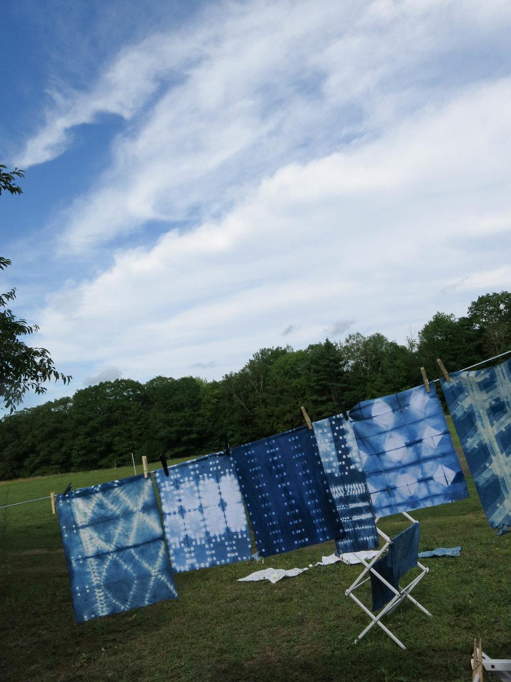 Blue sky Indigo (1 of 1).jpg