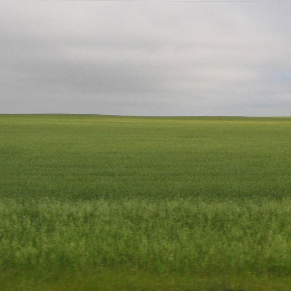 swath o green2.jpg