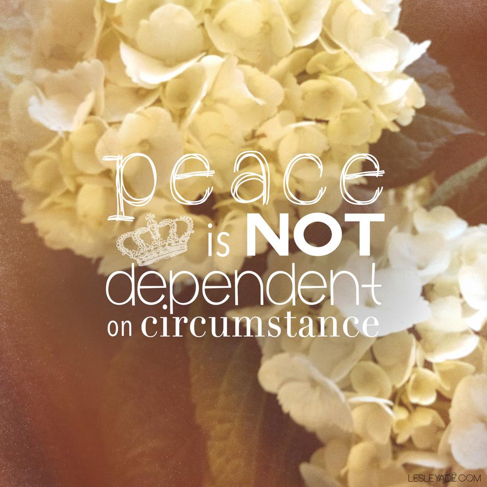 peace-hydrangea.jpg