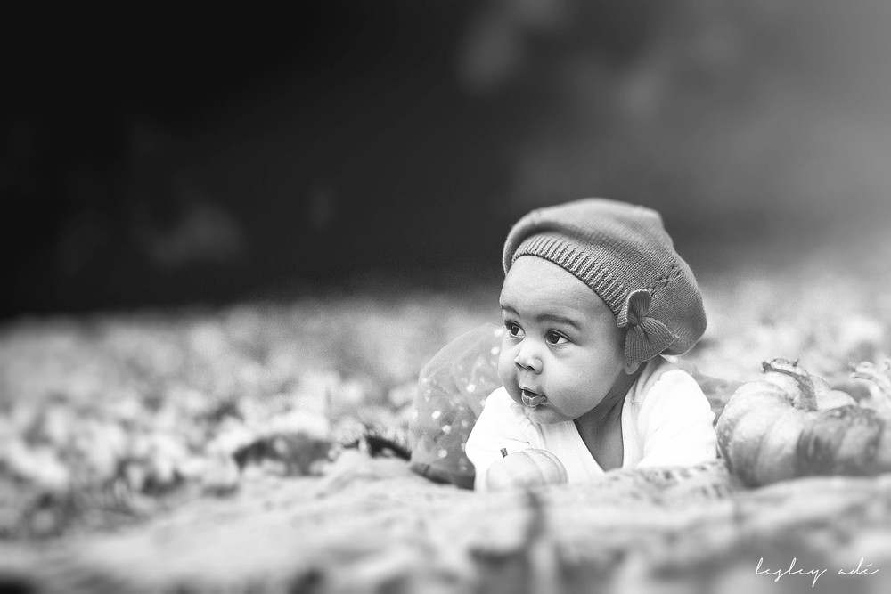 baby-portraits-albany-5 copy.jpg