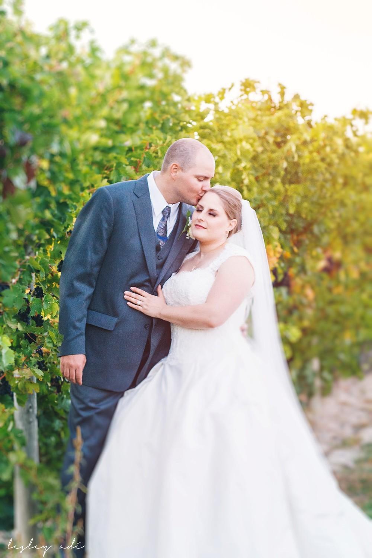 ferguson wedding_lesley ade photo-269.jpg