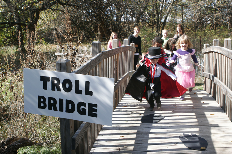 trollbridge.jpg