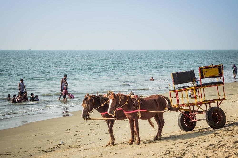Paradise beach horse cart