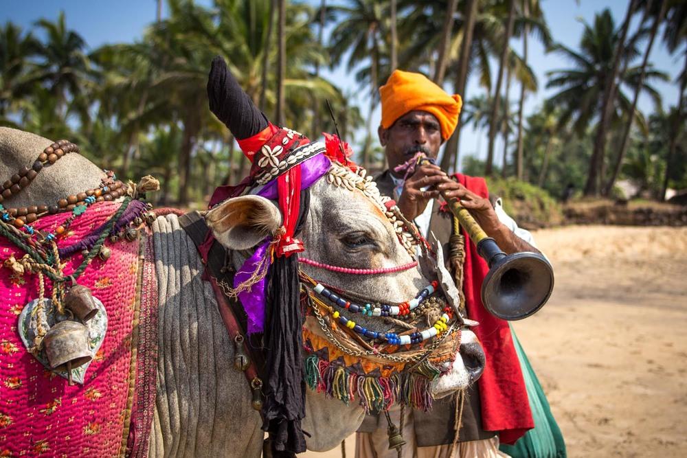 Anjuna performer