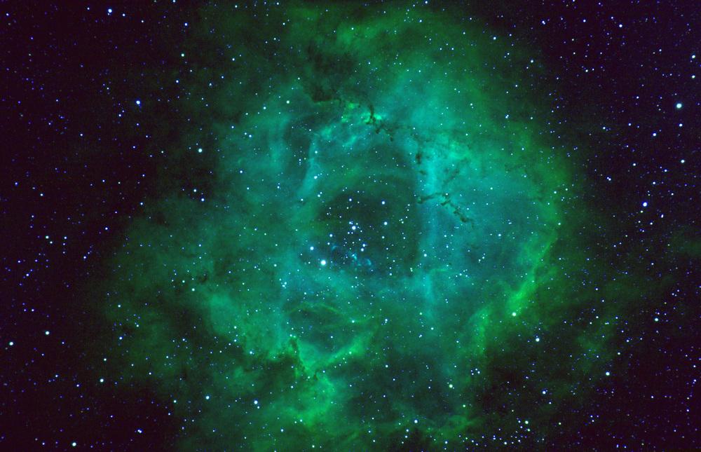 Rosette Nebula (Hubble Palette)