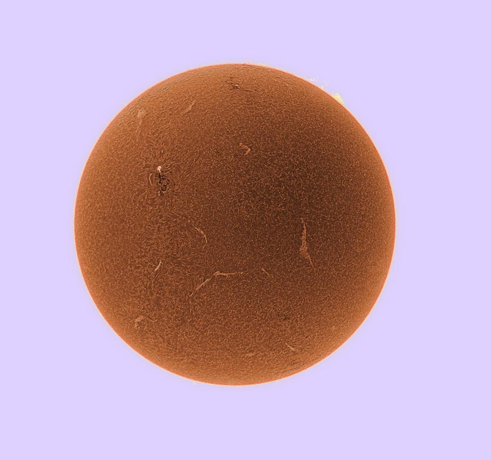 This is an image of our Sun taken with a Skyris 274m camera  thru a Coronado Solarmax 60mm.The Image was stacked with Registax and processed with Photoshop 4. The image was inverted and false color was added.