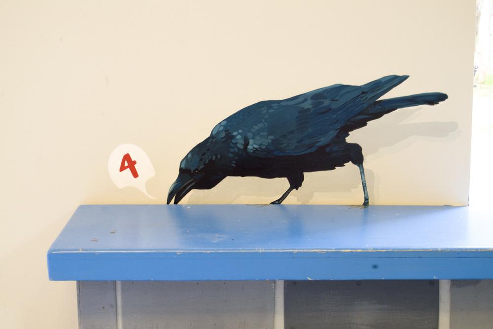 american crow_2.jpg