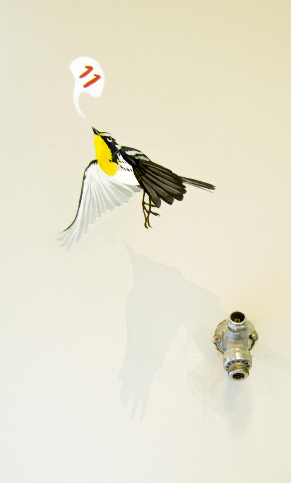 yellowthroat.jpg