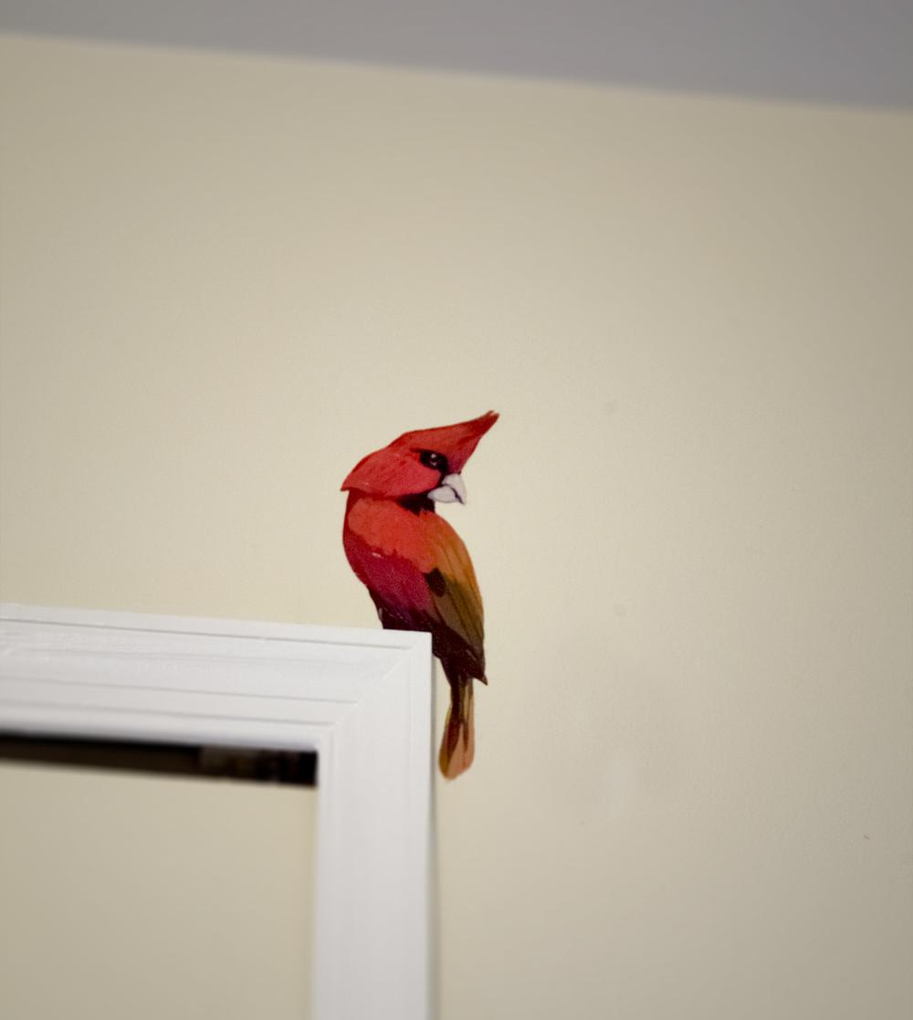cardinal1 copy.jpg