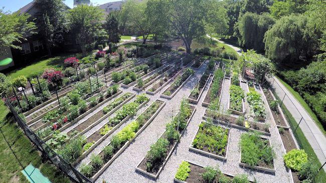 Garden201500DSC_6042.1.jpg