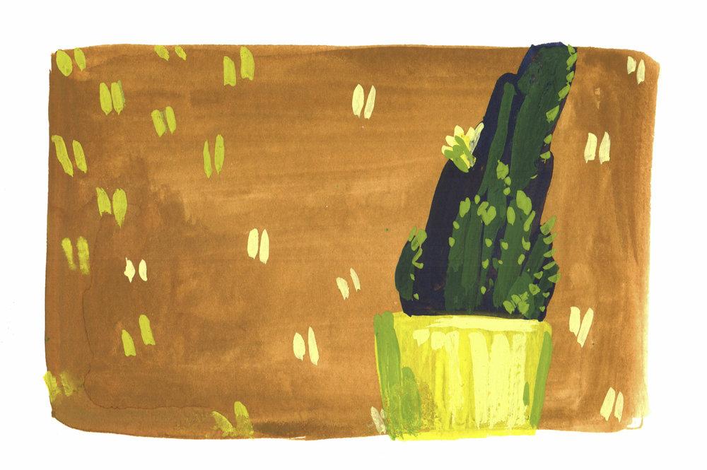 little cactus.jpg