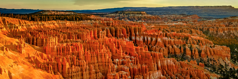 HOODOO - Bryce Canyon National Park, Utah