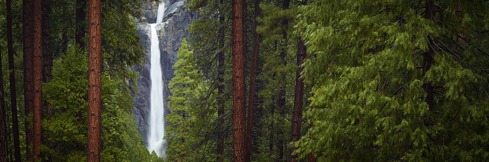 COUNCIL - Yosemite National Park, California
