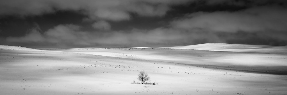 LONE WINTER - Wilmot, South Dakota