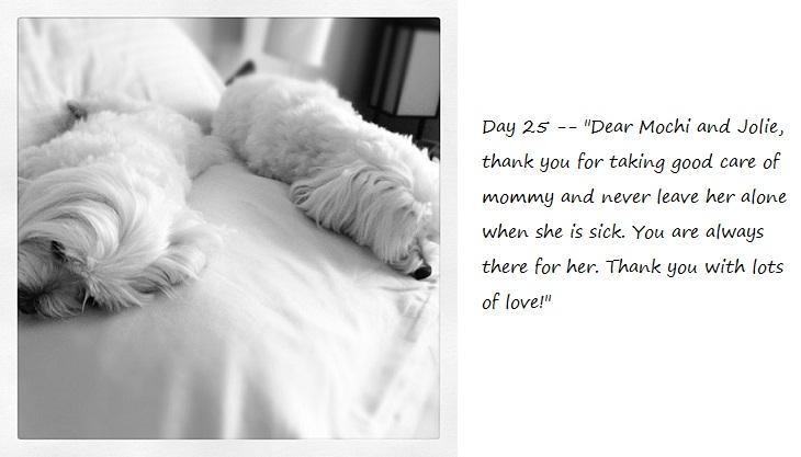 Day25_blog.jpg