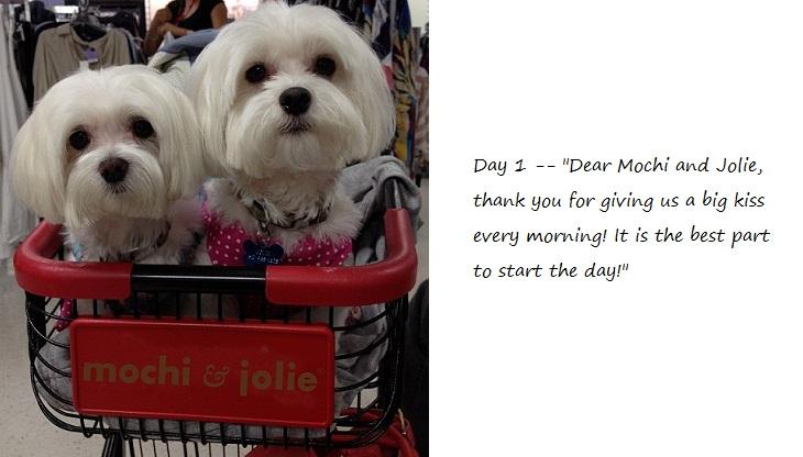 Day1_blog.jpg