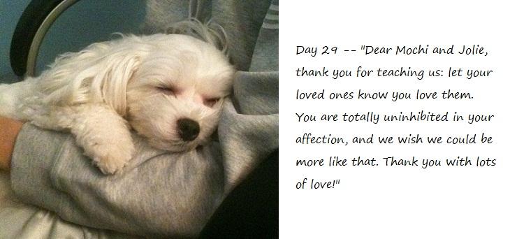 Day29_blog.jpg