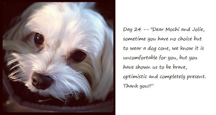 Day24_blog.jpg